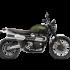 Triumph – Scrambler 1200